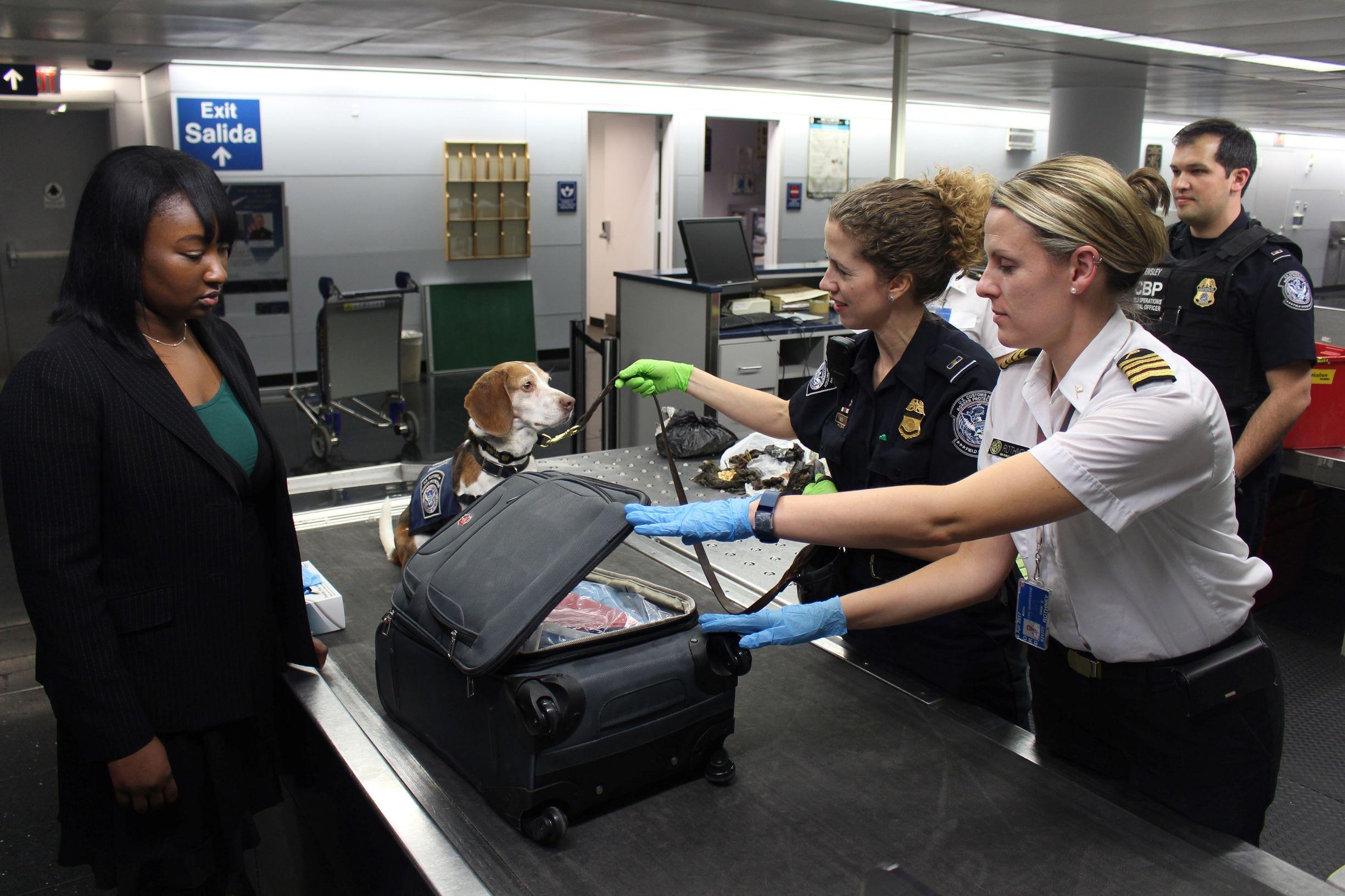 opérations de visite et saisies de la douane